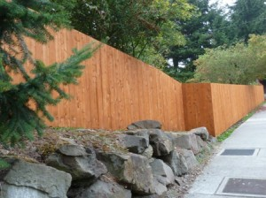 Cedar fence, stained and ready for winter